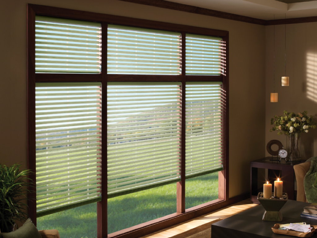Likely... The adult residential blind fill
